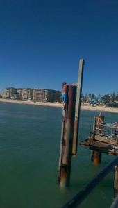 Glenelg Jetty Jumping